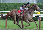 Ginger Punch Tries 10 Furlongs 