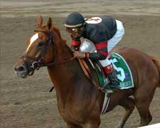 Ginger Punch Spices Up Ruffian Field