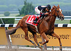 Champion Ginger Punch Retired