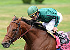 Gio Ponti Leads Turf Classic Nominees