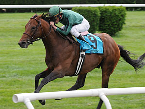Gio Ponti wins the 2009 Man o' War.