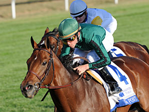 Gio Ponti Works, Ready for Manhattan Handicap
