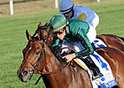 Fields Taking Shape for Keeneland Stakes