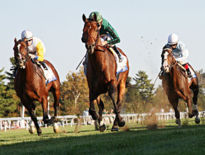 Gio Ponti Rallies to Win Turf Mile