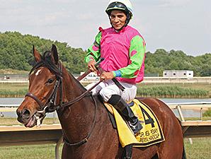 Gitchee Goomie wins the 2012 Dr James Penny Handicap.