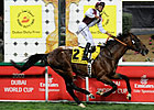 Gladiatorus Dominates Dubai Duty Free