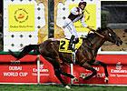 Gladiatorus Dominates Dubai Duty Free