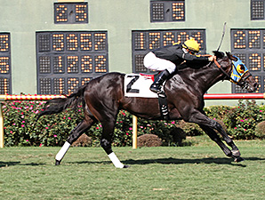 Global Power wins the 2012 Unbridled Stakes.