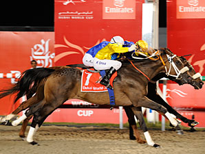 Dubai World Cup Winner Retired