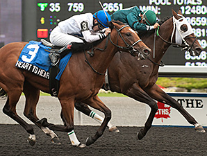Go Greeley wins the Vandal Stakes.