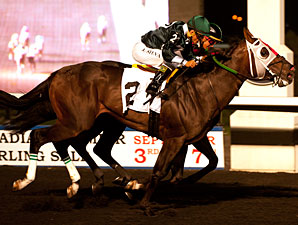Go Greeley wins the 2013 Simcoe Stakes.