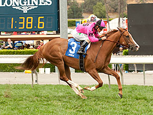 Go West Marie wins the 2015 Fran's Valentine Stakes.