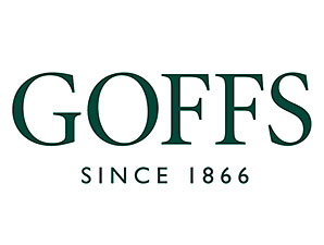 Goffs' Sale Posts Declines