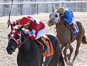 Gold Appointment wins the Crescent City Derby.
