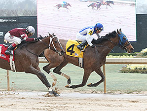 Gold Medal Dancer wins the 2015 Azeri Stakes.