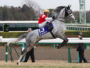 Gold Ship (Stay Gold x Point Flag, Mejiro McQueen), with Hiroyuki Uchida in the irons, wins the Arima Kinen.