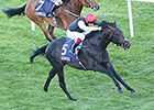 Golden Horn Ships in for BC Turf
