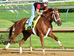 Golden Soul Back on Track for Belmont