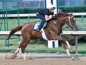 Golden Soul works at Churchill Downs on May 30, 2013.