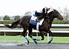 Breeders&#39; Cup Hopefuls on Keeneland Worktab