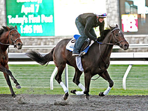 Golden Ticket works at Keeneland, April 7, 2012.