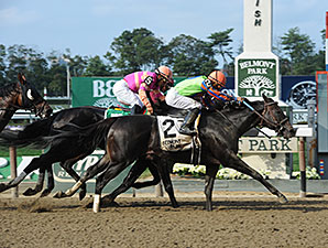 Golden Ticket wins the 2014 Left Bank Stakes.