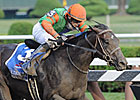 Golden Ticket Drills for Classic at Keeneland