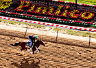 Slideshow: 2013 Preakness Week
