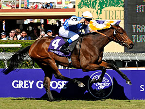 Goldikova to Defend Her BC Mile Title