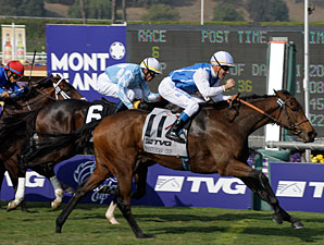 Goldikova wins the 2009 Breeders' Cup Mile.