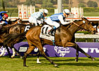 Goldikova on Course for Three-peat