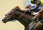 Goldream Upsets King's Stand Stakes at Ascot