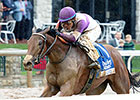 Gomo Sidelined From BC Juvenile Fillies