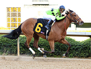 Good Deed wins the 2012 Prima Donna Stakes.