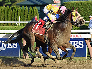 Good Luck Gus wins the 2015 Albany Stakes.