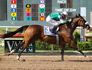 Goosey Moose wins the 2009 Assault Stakes.