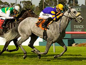 Gorgeous Goose Takes Wing in Wilshire Win
