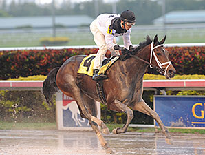 Got Lucky - Maiden Win, January 29, 2014.