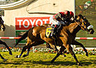 Gotta Have Her Saves Best for Last in Palomar