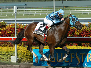 Gottcha Gold to Retire to Ocala Stud