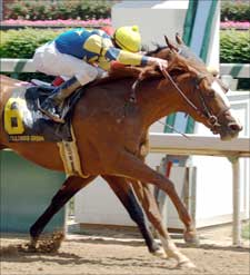 Gouldings Green Wins Stretch Duel in Alysheba