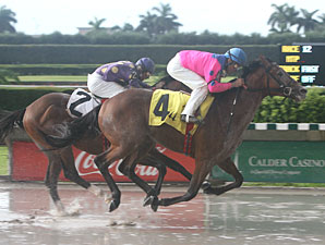 Gourmet Dinner wins the 2010 Dr. Fager Division of the Florida Stallion Stakes.