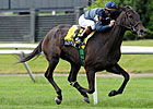 Overflow Field Takes Aim at American Oaks
