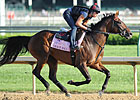 Grace Hall the One to Beat in KY Oaks