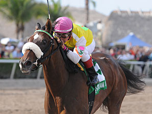 Kentucky Oaks Field Taking Shape