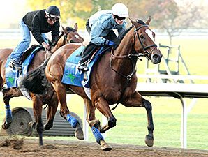 Grand Arch - Keeneland, October 25, 2014.