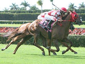 Grand Cash wins the 2009 Lord Juban Stakes.