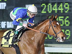 Grand Contender wins the 2014 Borgata Stakes.