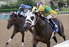 Grand Reward Collects Oaklawn Handicap