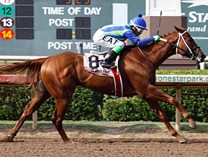 Grand Slam Andre wins the 2009 Middleground Stakes.